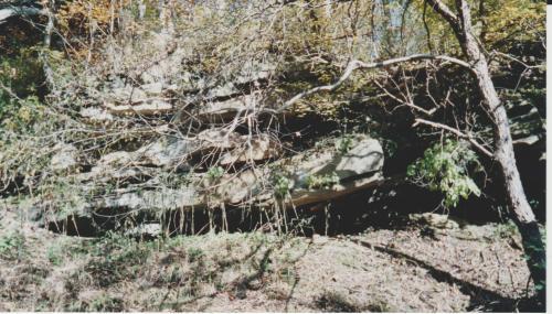 boulder-along-the-trail