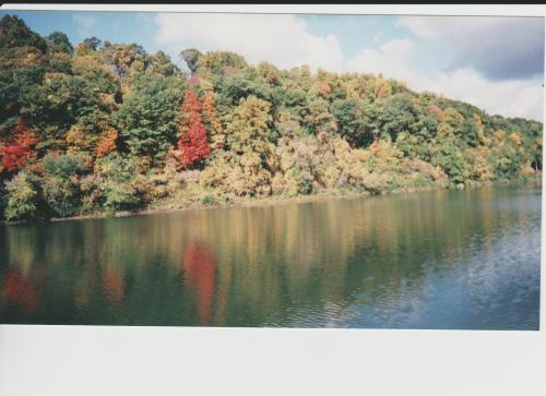 Allegheny River and woods in fall colors