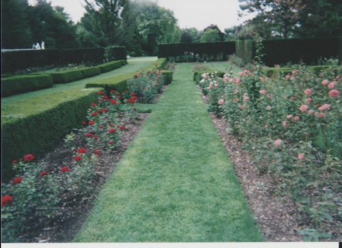 Formal Rose Garden in Park