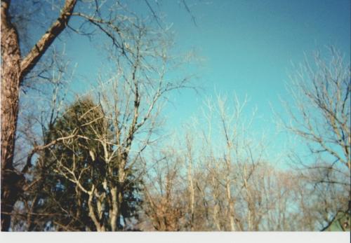 A Sky so Blue, (new)